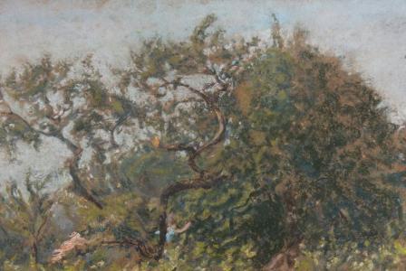 Ker-Xavier ROUSSEL       :    Le buisson